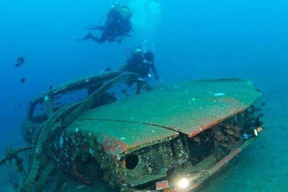 Artificial Reefs - Barnorama
