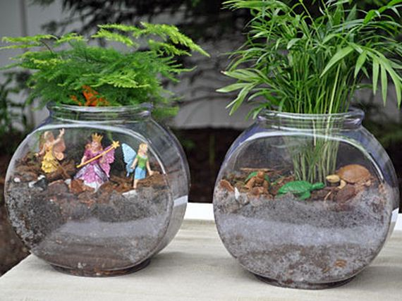 Simple ideas for adorable diy terrariums barnorama for Easiest fish to care for in a bowl