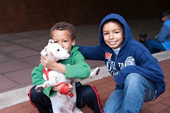 06-heartwarming-photos-of-the-pet-rescue