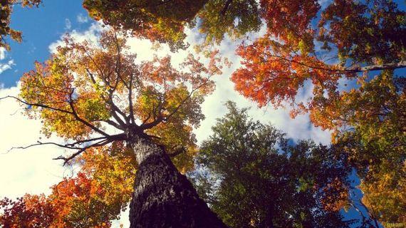 05-beautiful-nature-photos-