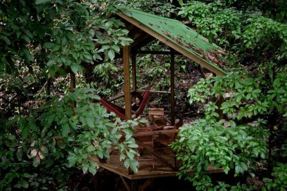 10-experience_treehouse_living_in_forested_costa_rica_resor