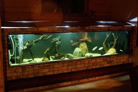 26-660_gallons_aquarium
