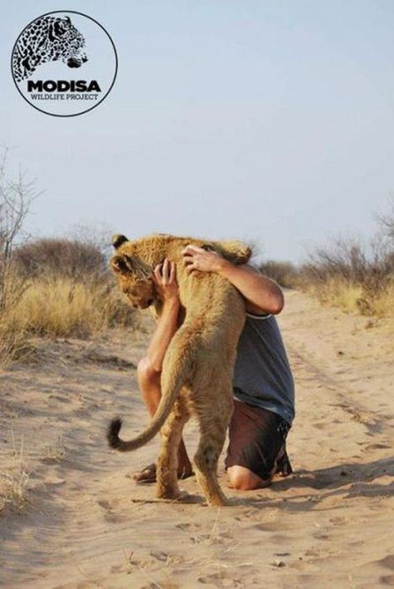 03-the_man_who_lived_with_lions_in_africa