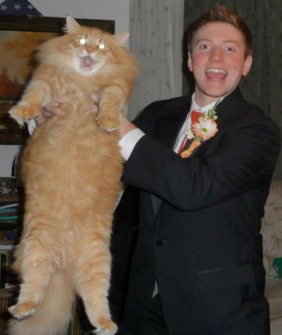 06-funny_prom_photo