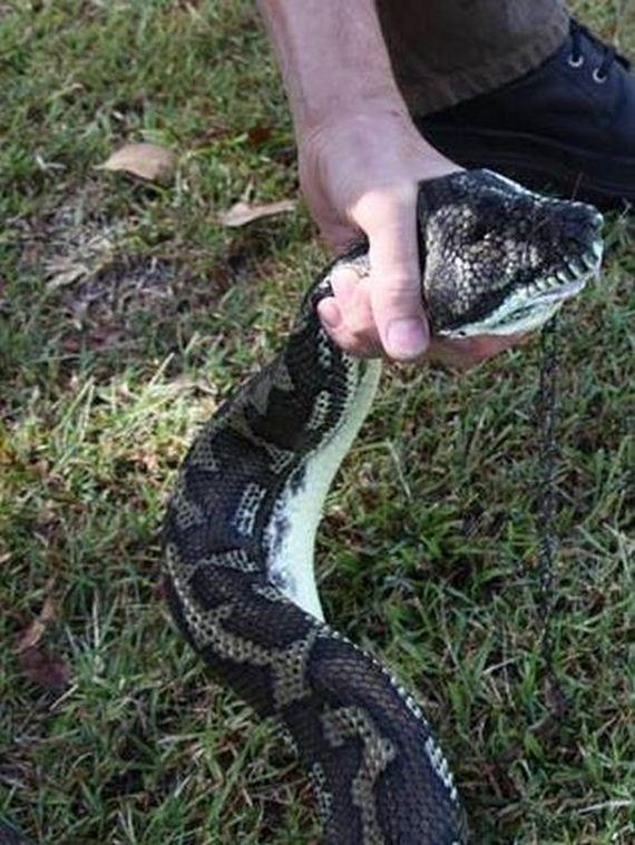03-python
