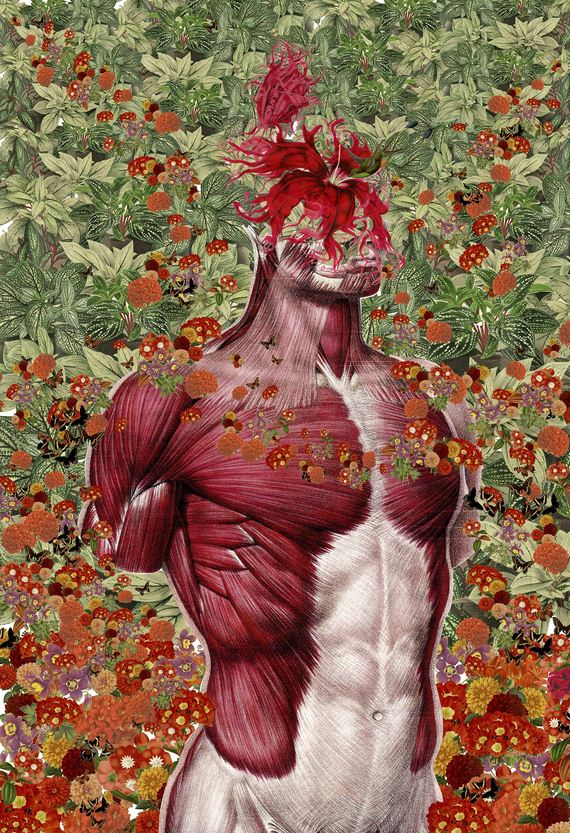 07-Anatomical-Collages