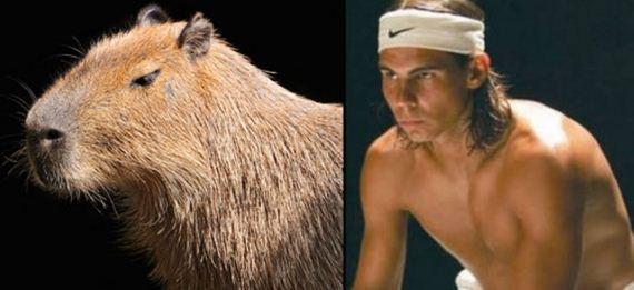 06-Like-Rafael-Nadal