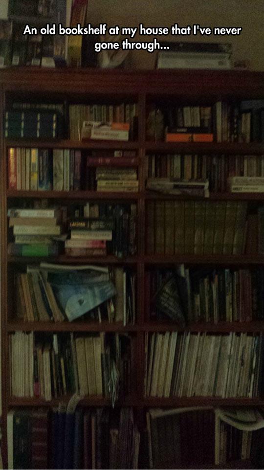 funny-bookshelf-old-William-Shakespeare