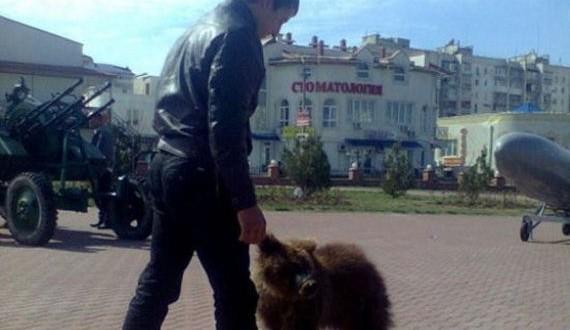 09-russia-bears-streets