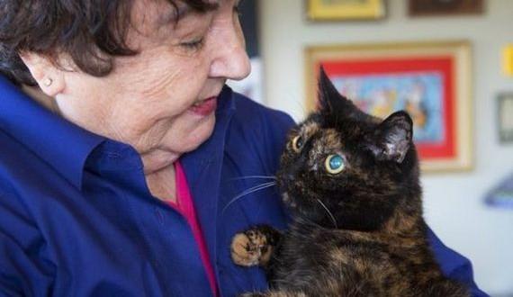 06-age-cat-record