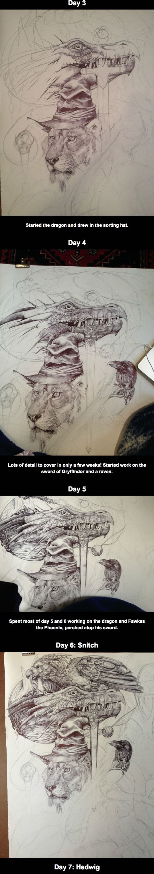 cool-Harry-Potter-drawing-lion-dragon-snake-crow