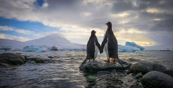 01-Antarctica-photo-trip