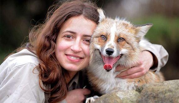01-fox-story