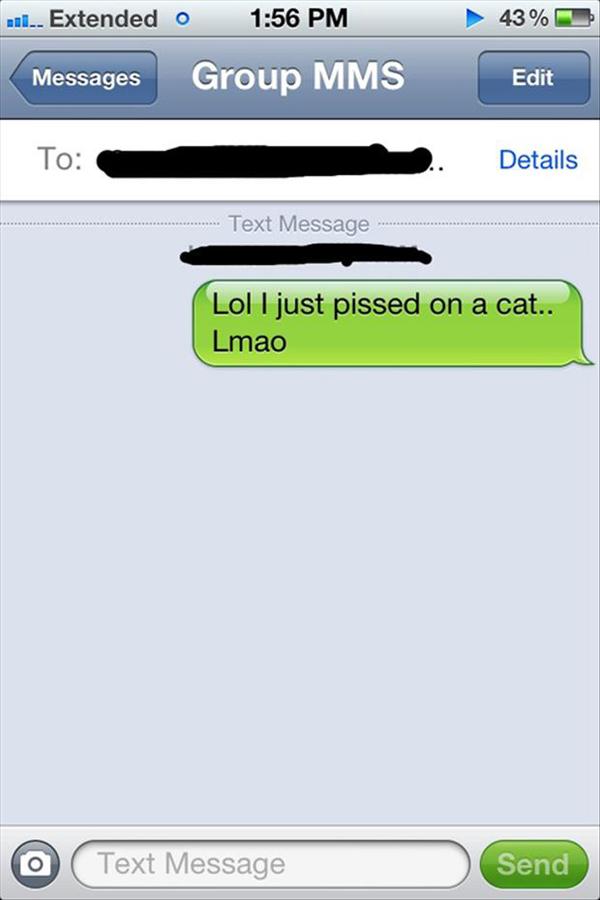 best-drunk-texts-cat-pissed