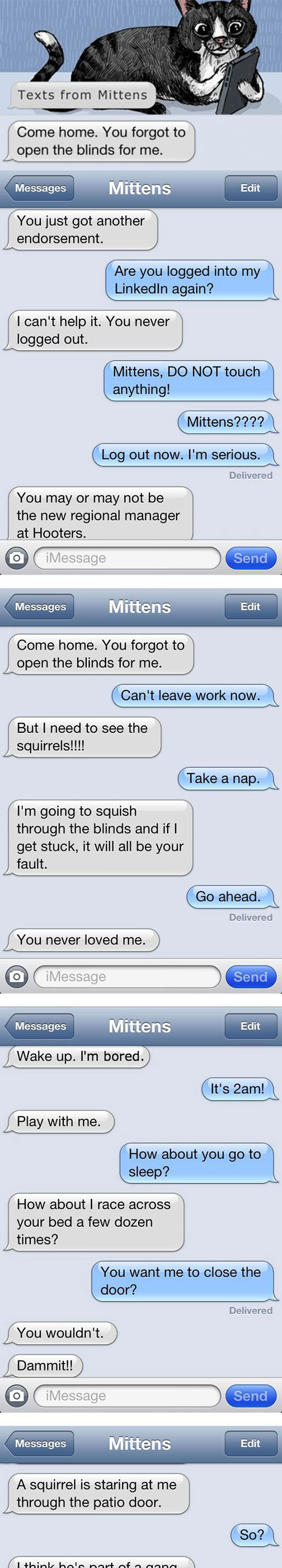 funny-cat-messages-iPhone-owner