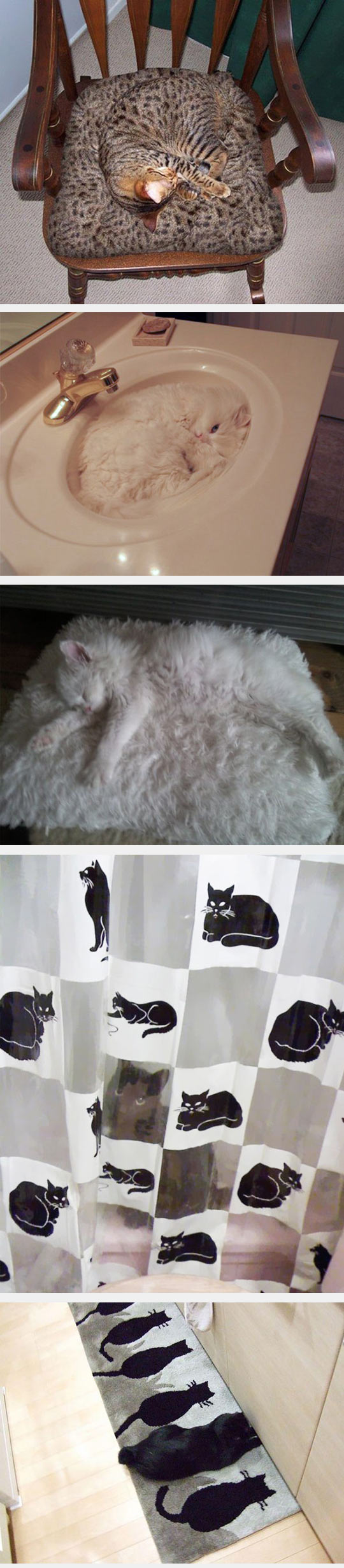 funny-camouflage-cat-chair-carpet