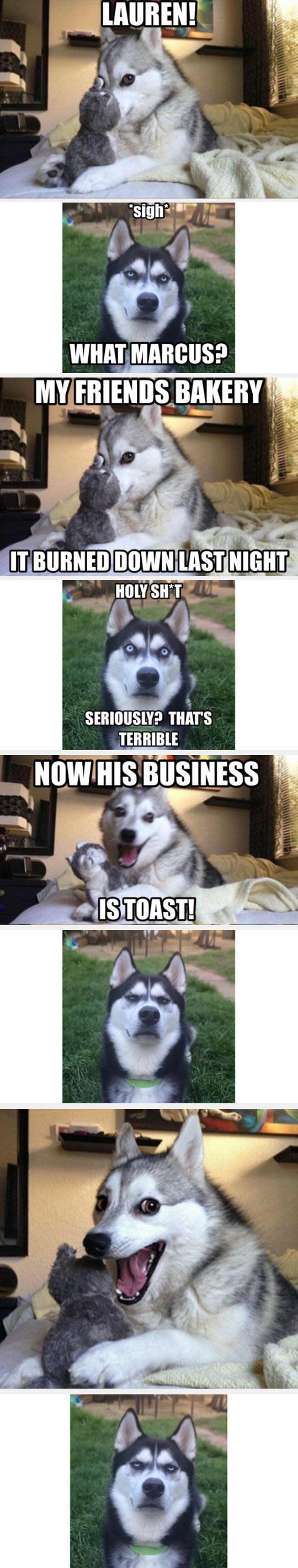 funny-pun-Husky-burn-toast