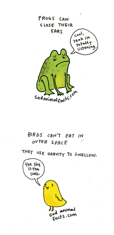 funny-sad-animal-facts-bird-frog