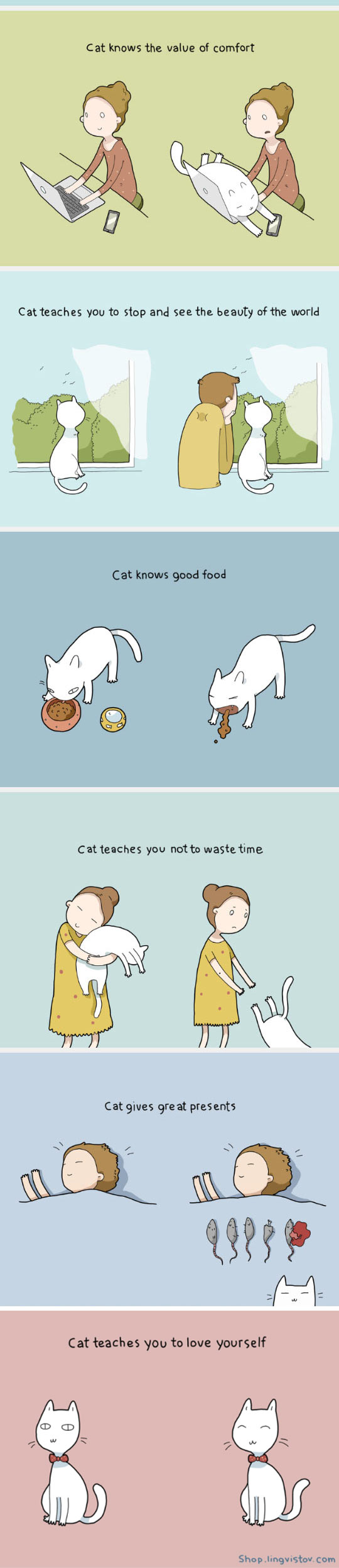 funny-cat-teach-us-things-cute