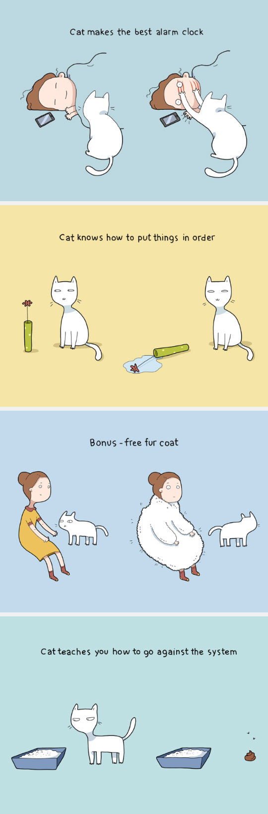 funny-cat-teach-us-things-life
