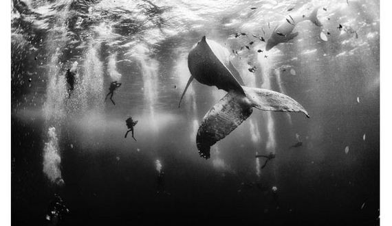 01-2015_national_geographic