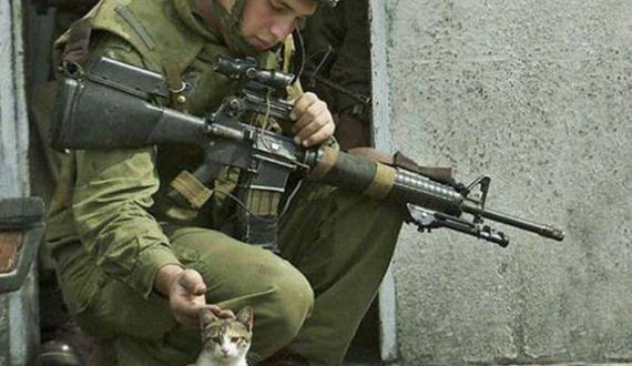 04-soldiers_and_cats