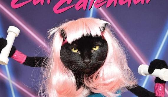 01-Kate-Funk-Cat-Calendar