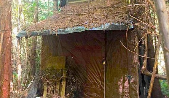 01-creepy-cabin-in-the-woods