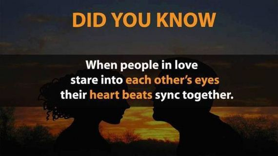 01-crazy_facts-6-2