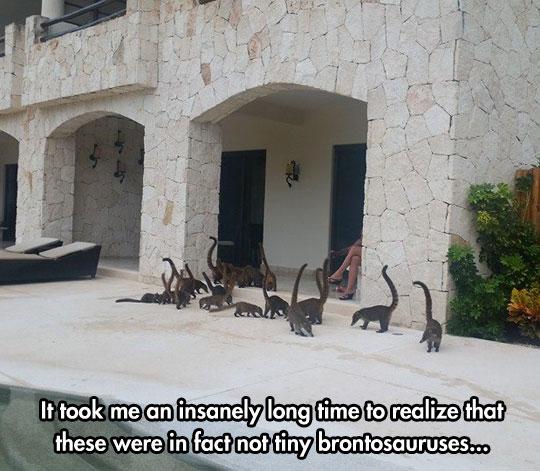 cool-cats-walking-brontosaur-lookalike