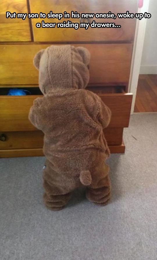 cool-kid-onesie-bear-drawer