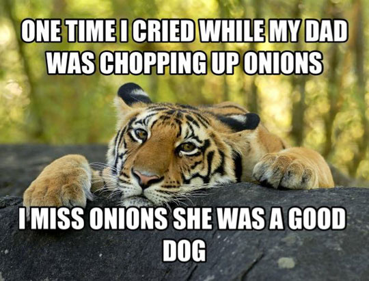 cool-tiger-onion-shopping