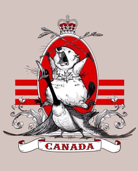 cool-canada-beaver-duck-flag-crown