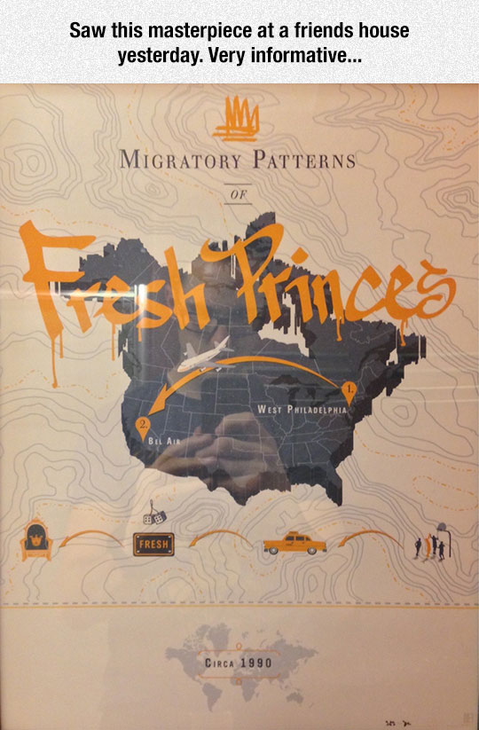 cool-fresh-prince-migratory-patterns-map