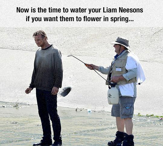 cool-liam-neeson-scene-watering-man