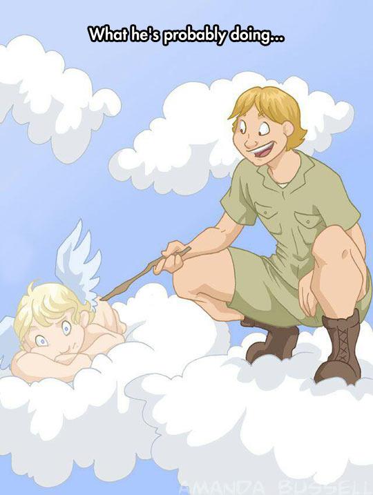cool-steve-irwin-annoying-angels