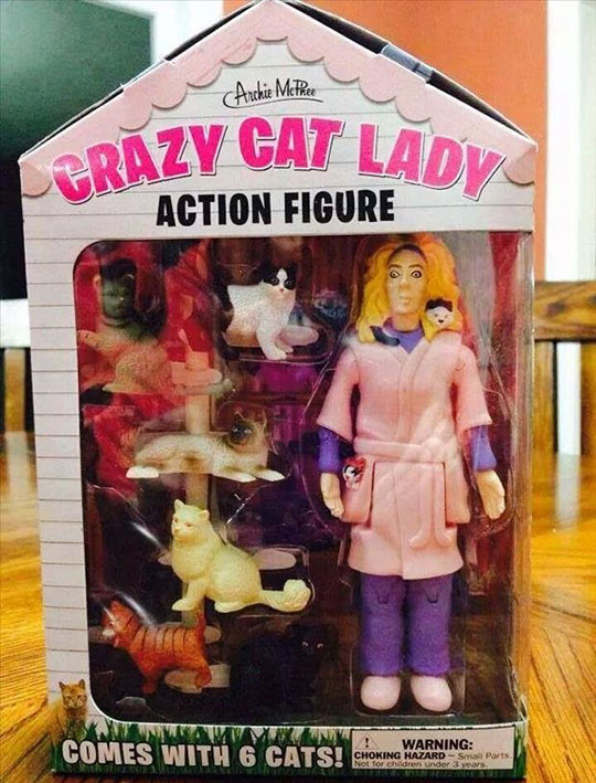 cool-cat-lady-action-figure