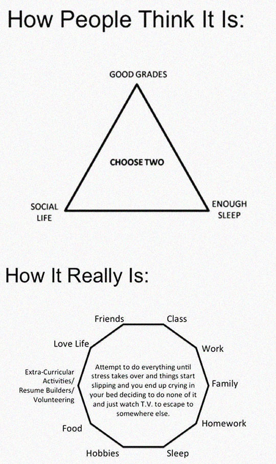 cool-college-life-chart-complex