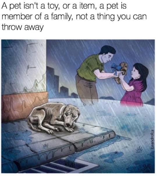 cool-dog-pet-drawing-sad