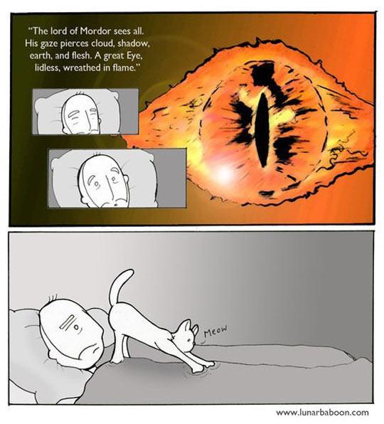 cool-dream-mordor-cat-butt-comic