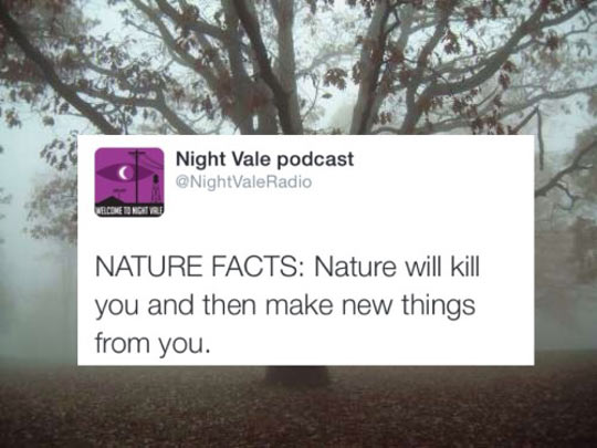 cool-fact-nature-make-new-thing