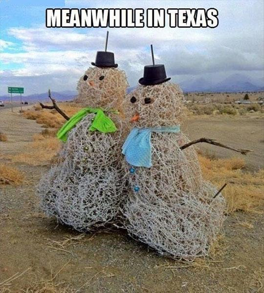 cool-snowman-dessert-texas