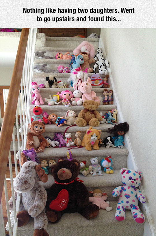 cool-stairs-daughters-plush-toys