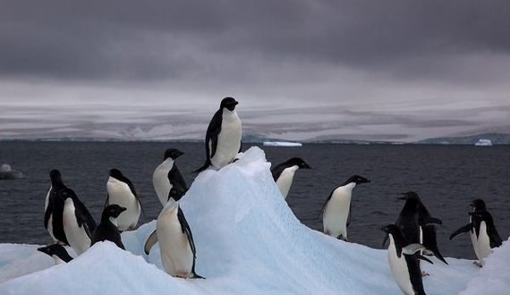 01-dont-know-much-about-antarctica-but-heres-what-we-do-photos