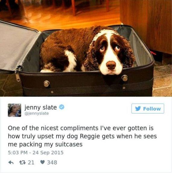 01-funny_dog_tweets