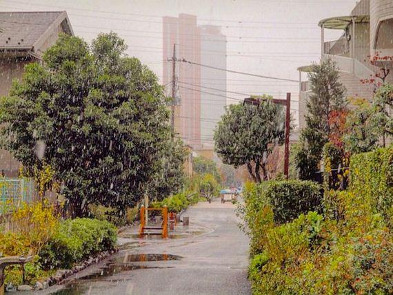 02-tokyo_snowed