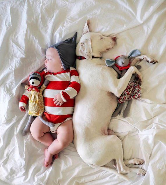 03-tiny-human-dogs