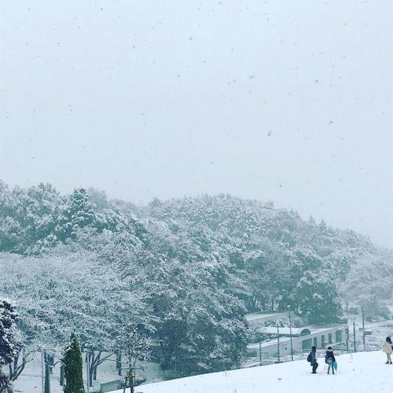 03-tokyo_snowed
