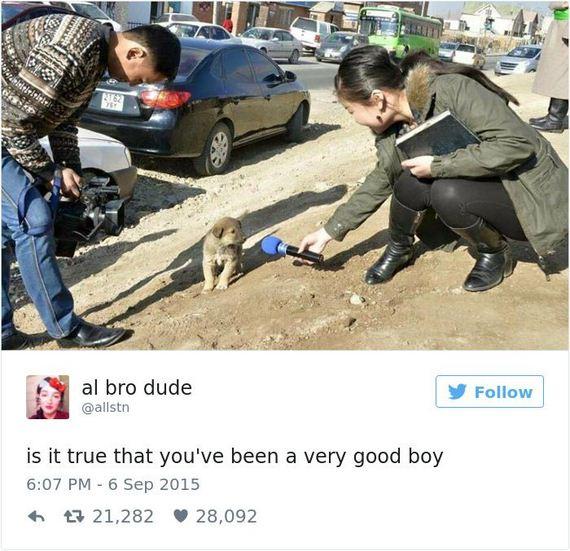 04-funny_dog_tweets