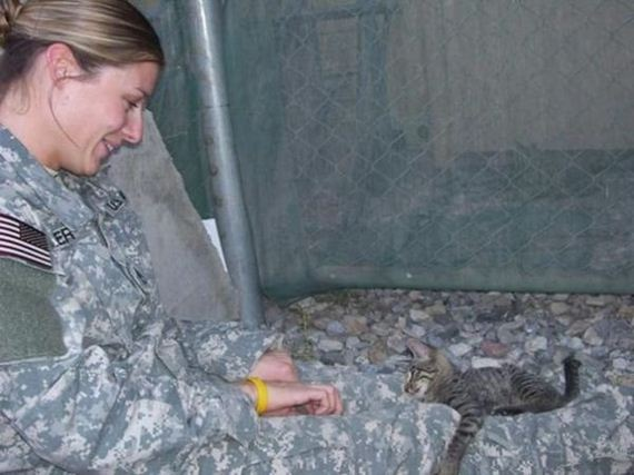 04-soldier-saves-cat-from-afghanistan
